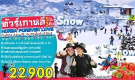 ทัวร์เกาหลี กุมภาพันธ์ KOREA FOREVER LOVE 5วัน 3คืน บินจินแอร์
