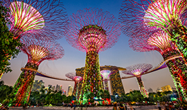 ทัวร์สิงคโปร์ สวนการ์เด้นส์บายเดอะเบย์ เมอร์ไลอ้อน 4วัน 3คืน บินไทยไลอ้อนแอร์ (SL)