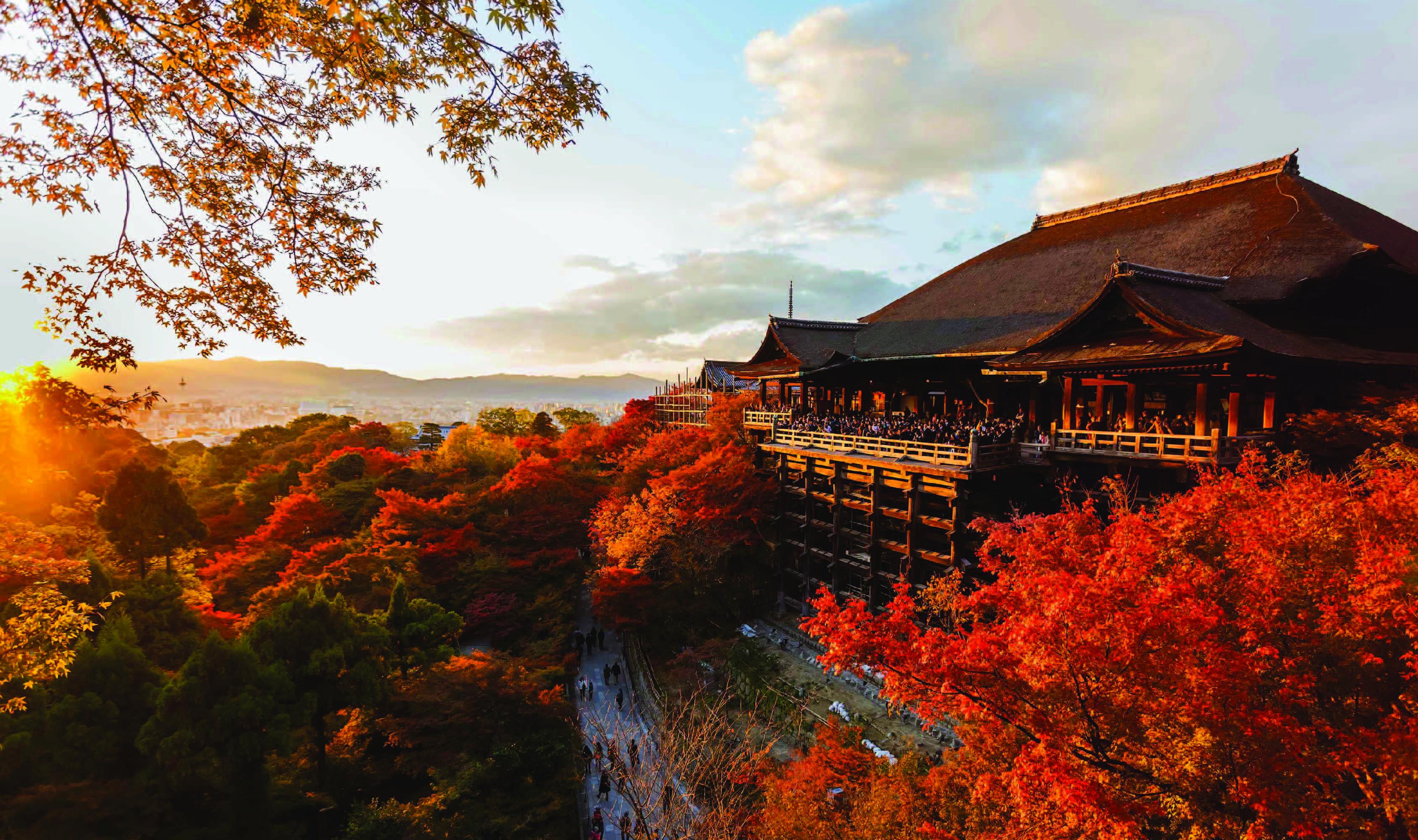 ทัวร์ญี่ปุ่น Amazing Sakura โอซาก้า นารา เกียวโต โกเบ 4วัน 3คืน  บิน TZ