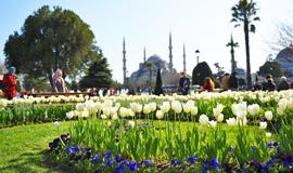 ทัวร์ตุรกี เข้าอิสตันบูล ออกอังคาร่า ชมสวนดอกทิวลิป 10 วัน 9 คืน บินการ์ต้า แอร์เวย์ (QR)