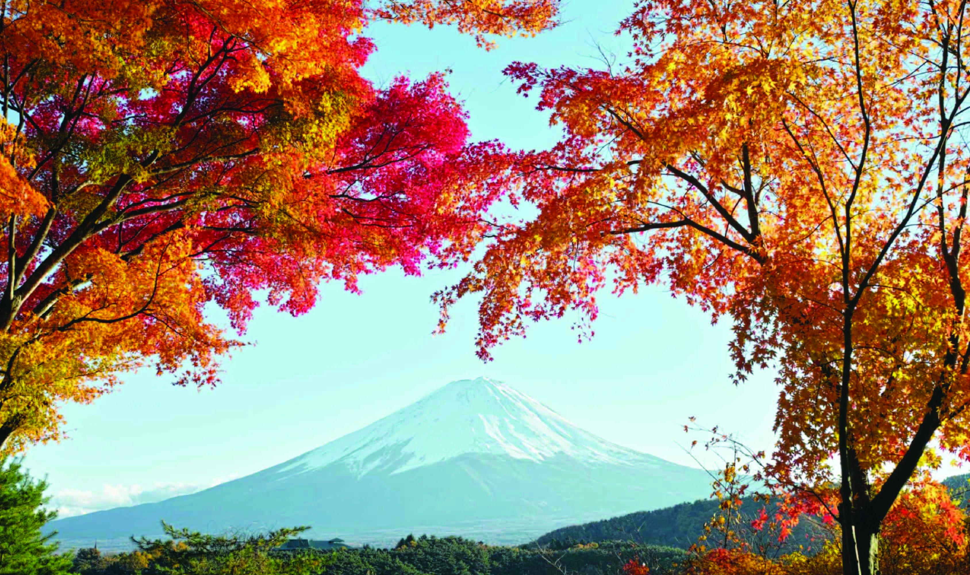 ทัวร์ญี่ปุ่น  Wow#1 Golden Route โตเกียว โอซาก้า 5วัน3คืน บิน TZ